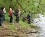 Die Eder bei Burgwald