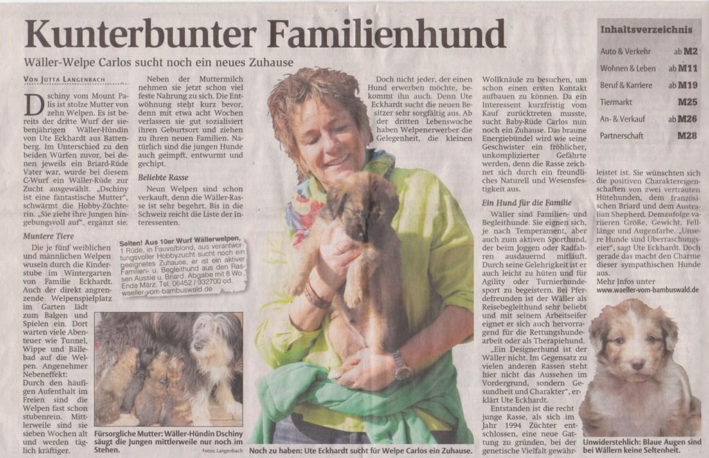 Kunterbunter Familienhund - HNA 27.3.2013 001