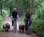 Fahrradtour um Haltern