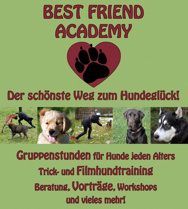 Best Friend Academy
